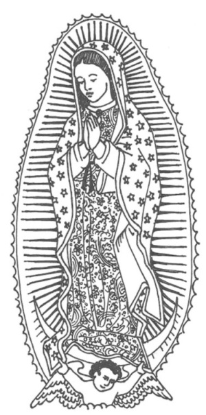 our-lady-of-guadulupe